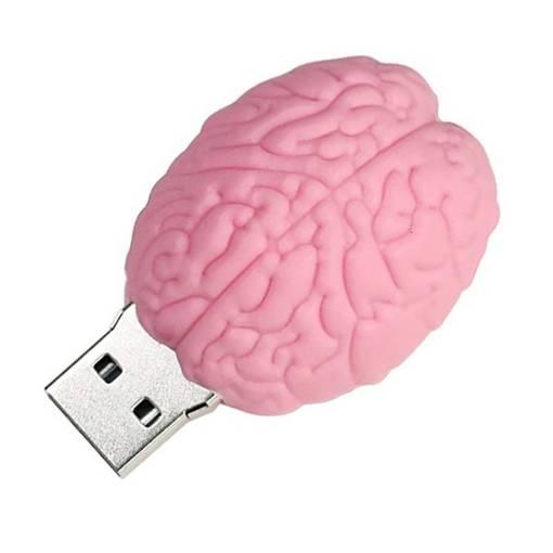 PENDRIVE MÓZG Róż Operacja Rozum Głowa PAMIĘĆ 8GB